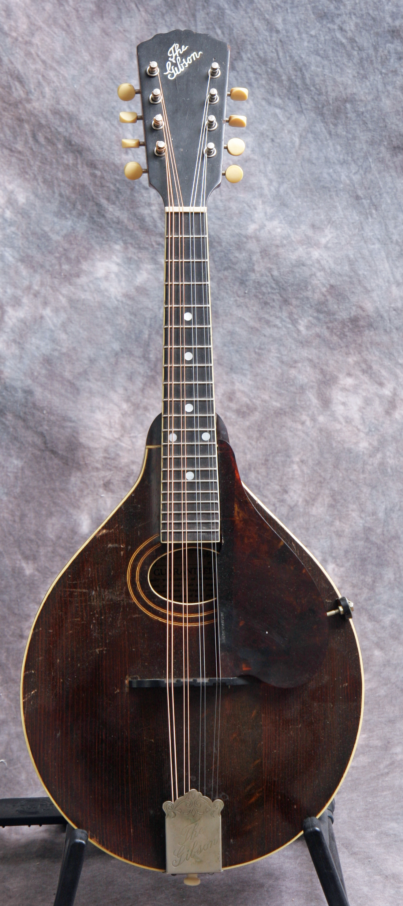 used guitars mandolins for sale mandolin world headquarters. Black Bedroom Furniture Sets. Home Design Ideas