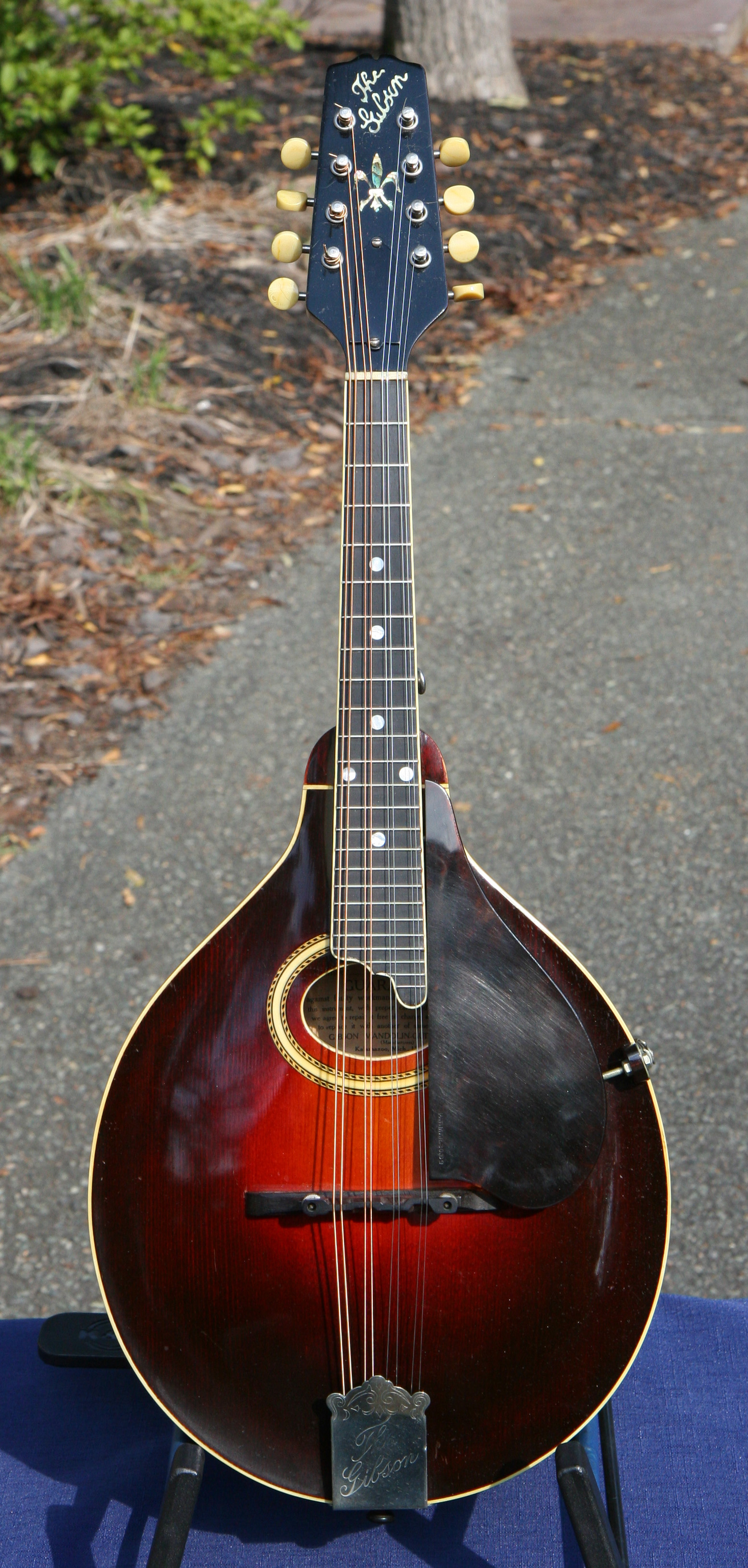 1924 gibson a4 mandolin. Black Bedroom Furniture Sets. Home Design Ideas